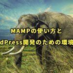 MAMPの使い方とWordPress開発のための環境設定