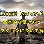 【Linux】lsコマンドの基本的な使い方とオプションについて解説
