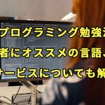 【プログラミング勉強法】入門者にオススメの言語、本、サービスについても解説